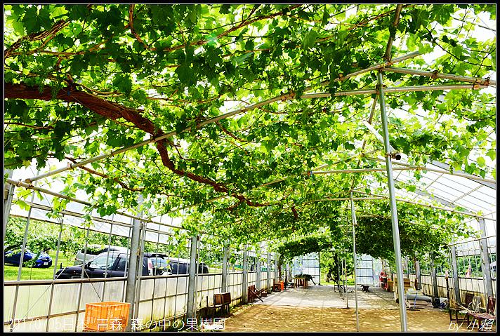 20170705日本青森森の中の果樹園32.jpg