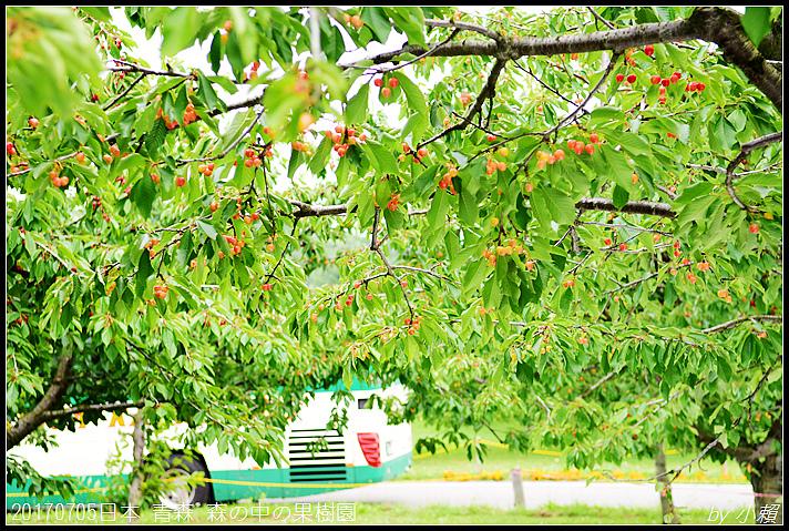 20170705日本青森森の中の果樹園21.jpg