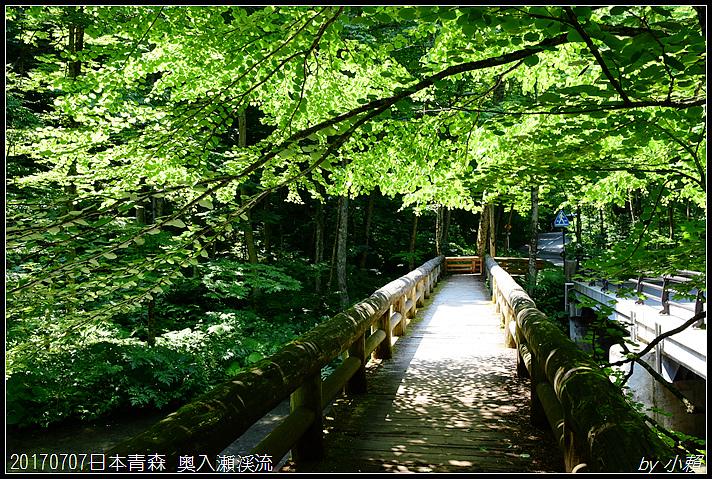 20170707日本青森 奥入瀬渓流118.jpg