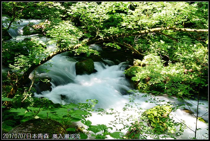 20170707日本青森 奥入瀬渓流136.jpg