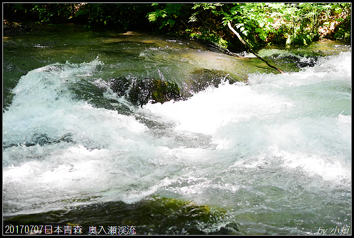 20170707日本青森 奥入瀬渓流167.jpg