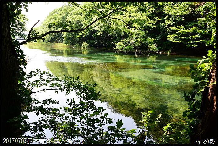 20170707日本青森 奥入瀬渓流326.jpg