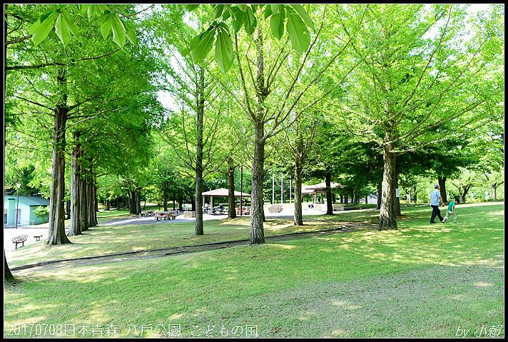 20170708日本青森 八戶公園 こどもの国026.jpg