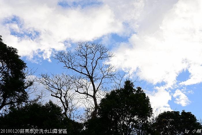 20180120苗栗泰安洗水山露營區214.jpg