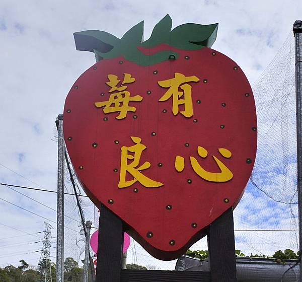 莓有良心 1b 招牌.jpg