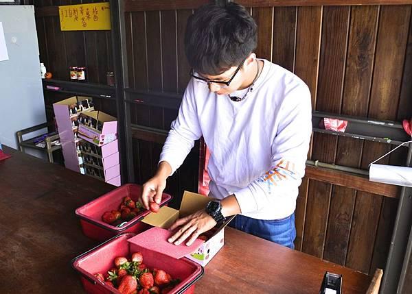 莓有良心 4.jpg