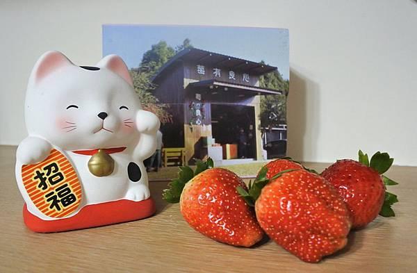 莓有良心 4c.jpg