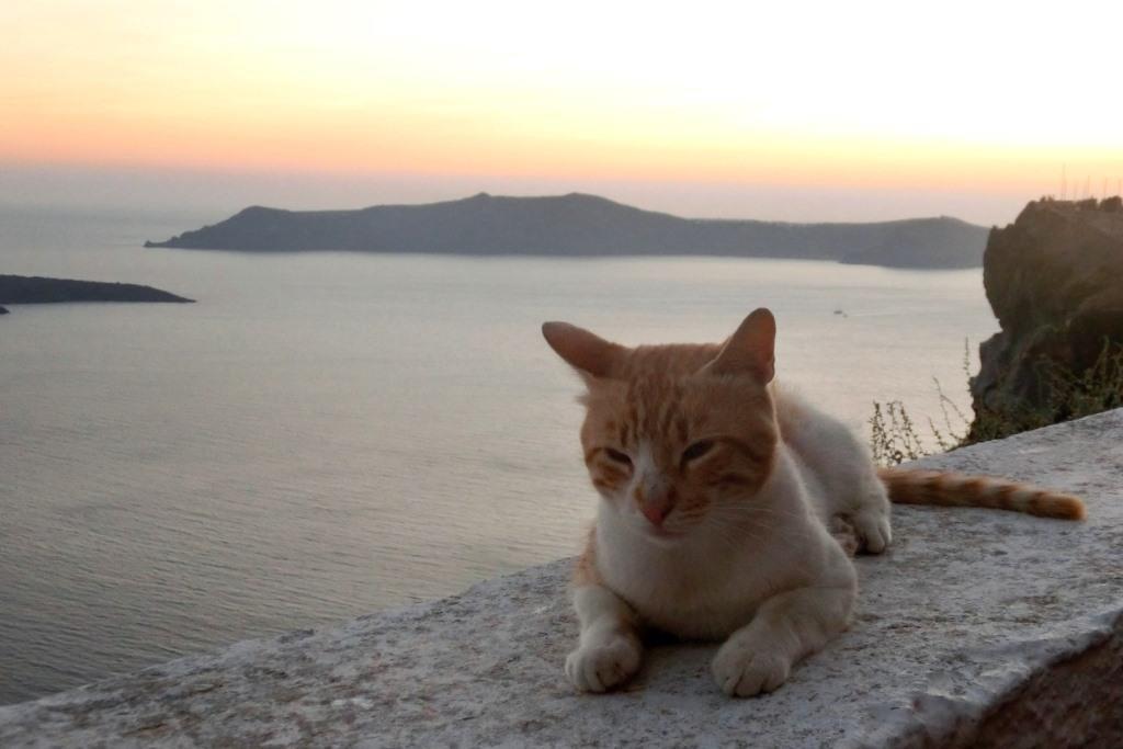150714-8聖托里尼島費拉看夕陽 (88)