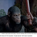 rise-of-the-planet-of-the-apes-20110706112828813 (1).jpg