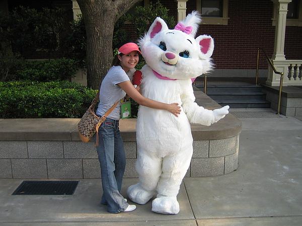 這隻貓我也不知道叫什麼貓
