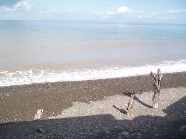 休息站的海