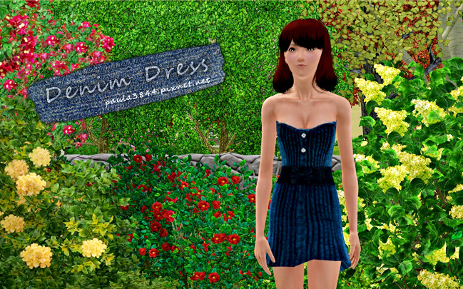 denim dress photo2.png