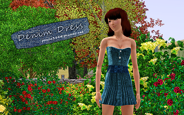 denim dress photo1.png