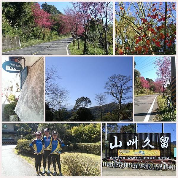 20140124 東眼山.jpg