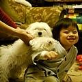 20120119-媽咪硬要把粽子捉進來....瞧粽子的表情...一臉疑惑的模樣