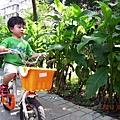 2012.06.27-早晨時間,若是天氣不錯學校就會讓我們到一旁公園騎腳踏車...這是每天驅使我起床到校的動力之一