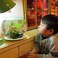 2012.12.29-來到一家餐廳,先跟裡頭的小魚打聲招呼...