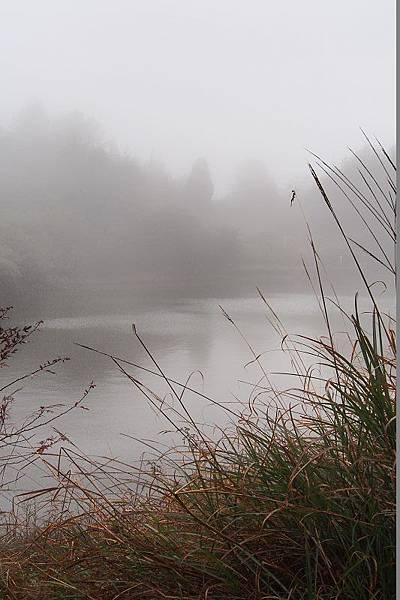 2012.12.30-傳說中的天池...在我眼裡怎像小水窪一樣,有些沒有看頭~