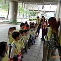 20130301-a戶外_台北燈節3月A (3).jpg