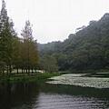FuShan_180.jpg