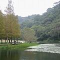 FuShan_110.jpg