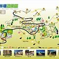 TonSi_Forest640.jpg