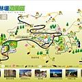 TonSi_Forest.jpg