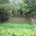 南仁湖_060.jpg