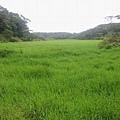 南仁湖_080.jpg