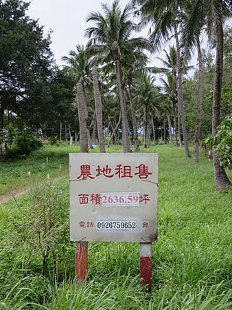 2013.12.13 花蓮 075.JPG