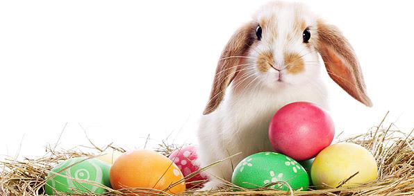 easter-bunny.jpg