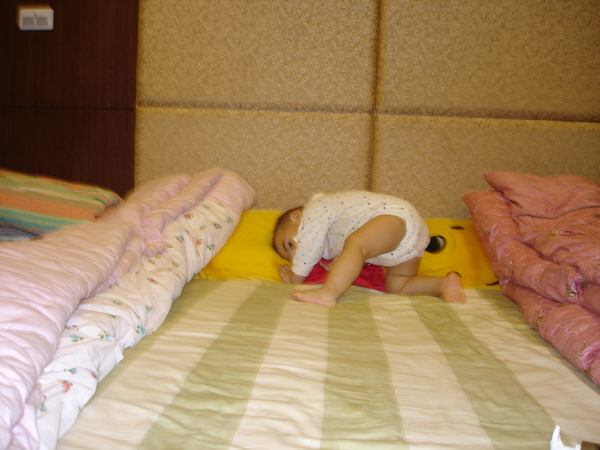最愛撲枕頭