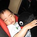 企鵝陪我睡