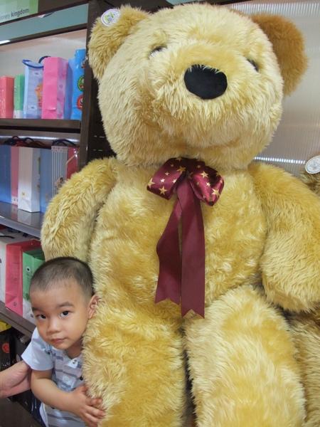 這隻熊也吃的太大隻了吧(2y11m7d)