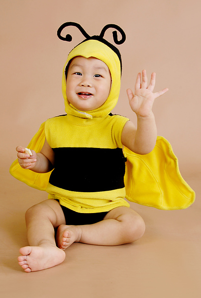 偷吃餅乾的小蜜蜂(1y18d)(2010.02.27)