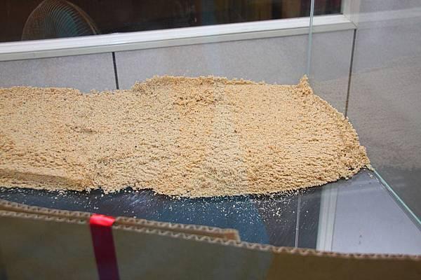 鋪上基肥沙