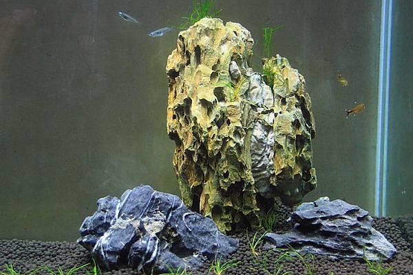 會影響水硬度的石材