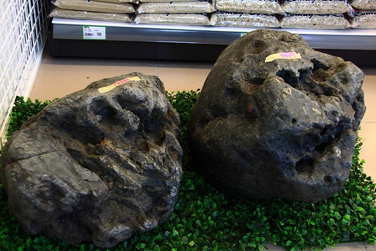 兩顆巨型的八海石