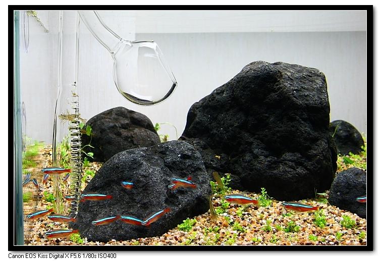玻璃進出水口2.JPG