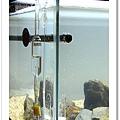 玻璃計泡器.JPG