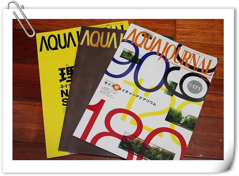 日本ADA雜誌.JPG