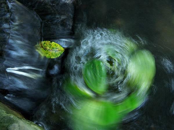 水轉浮萍-21.jpg