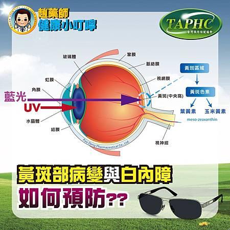 如何預防黃斑部病變與白內障-01
