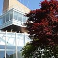 綠茶博物館外一隅