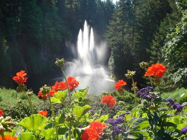 花園中的噴泉