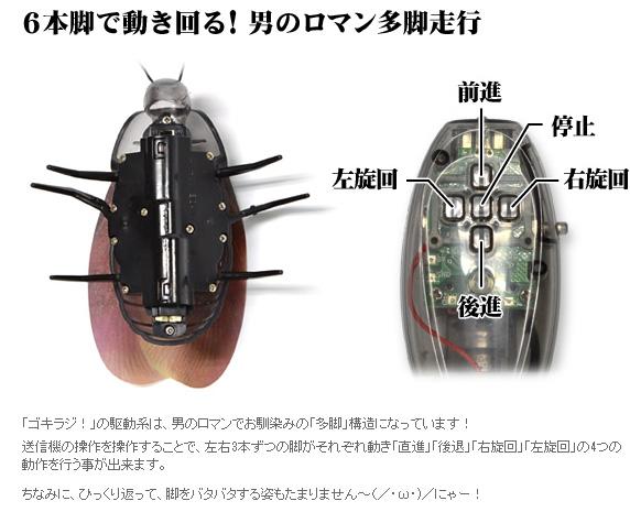 roach2