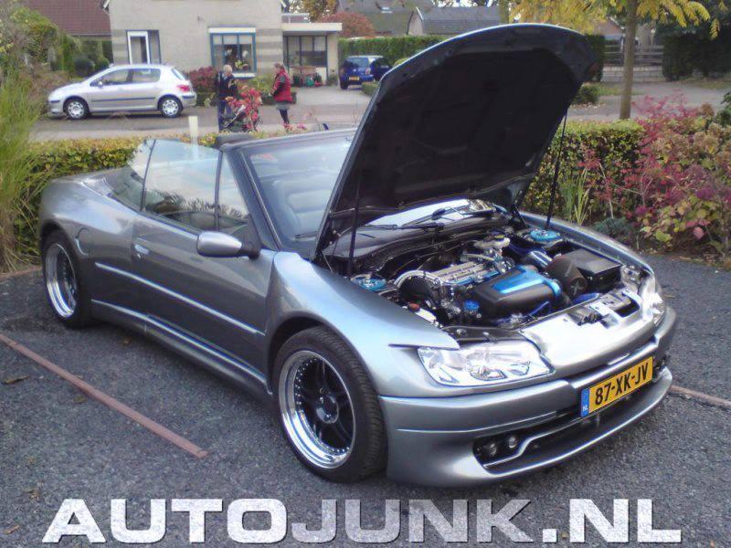 306cab maxi