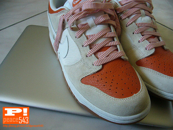 Nike Dunk lo CL