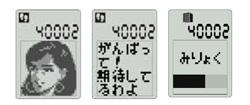 shima05_s.jpg
