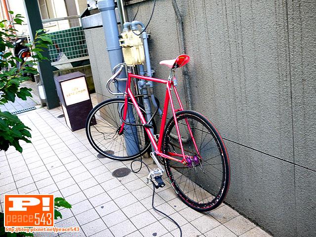 P1080994.JPG
